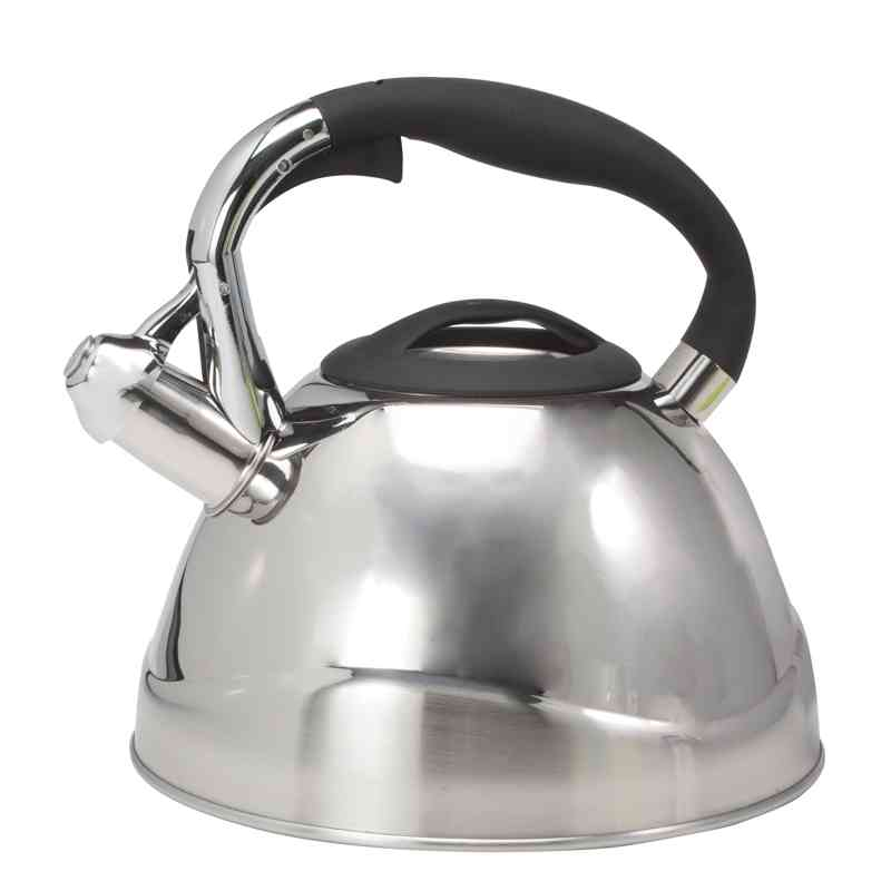 Ch'a Vio Whistling Tea Kettle - Steel