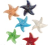 Glass Magnet Starfish