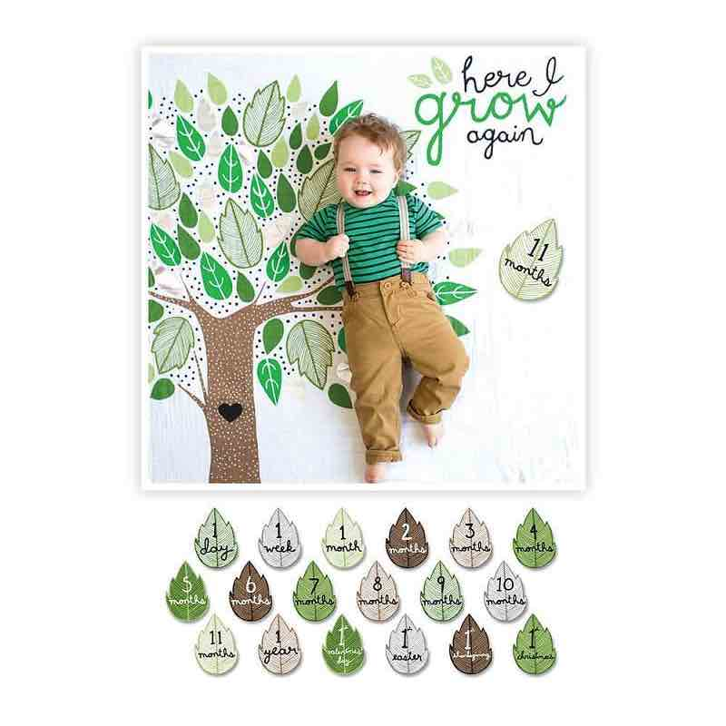 Lulujo Deluxe Baby's 1st Year Blanket & Cards | Here I Grow Agai