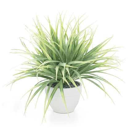 Torre & Tagus Grass Plant - Light Green