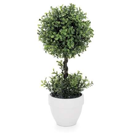 Torre & Tagus Mini Boxwood Topiary